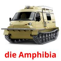 die Amphibia picture flashcards