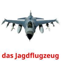 das Jagdflugzeug picture flashcards
