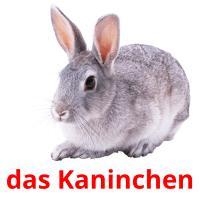 das Kaninchen picture flashcards
