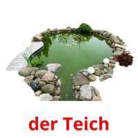 der Teich picture flashcards
