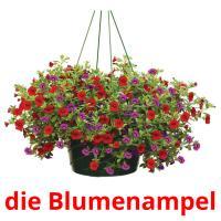 die Blumenampel picture flashcards