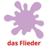 das Flieder picture flashcards