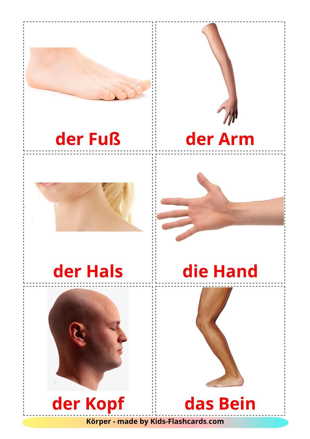 Body Parts - 26 Free Printable german Flashcards