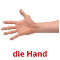 die Hand picture flashcards