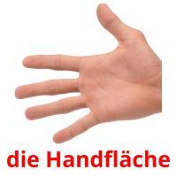 die Handfläche picture flashcards