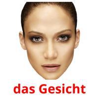 das Gesicht picture flashcards