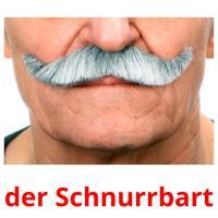 der Schnurrbart picture flashcards