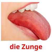 die Zunge picture flashcards