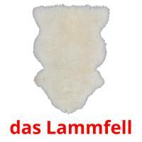 das Lammfell picture flashcards
