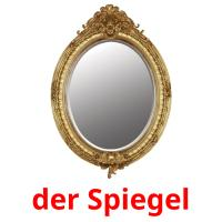 der Spiegel picture flashcards