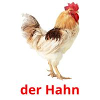 der Hahn picture flashcards