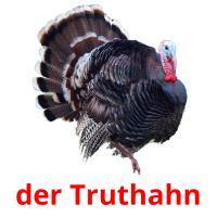 der Truthahn picture flashcards