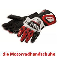 die Motorradhandschuhe picture flashcards
