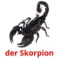 der Skorpion picture flashcards