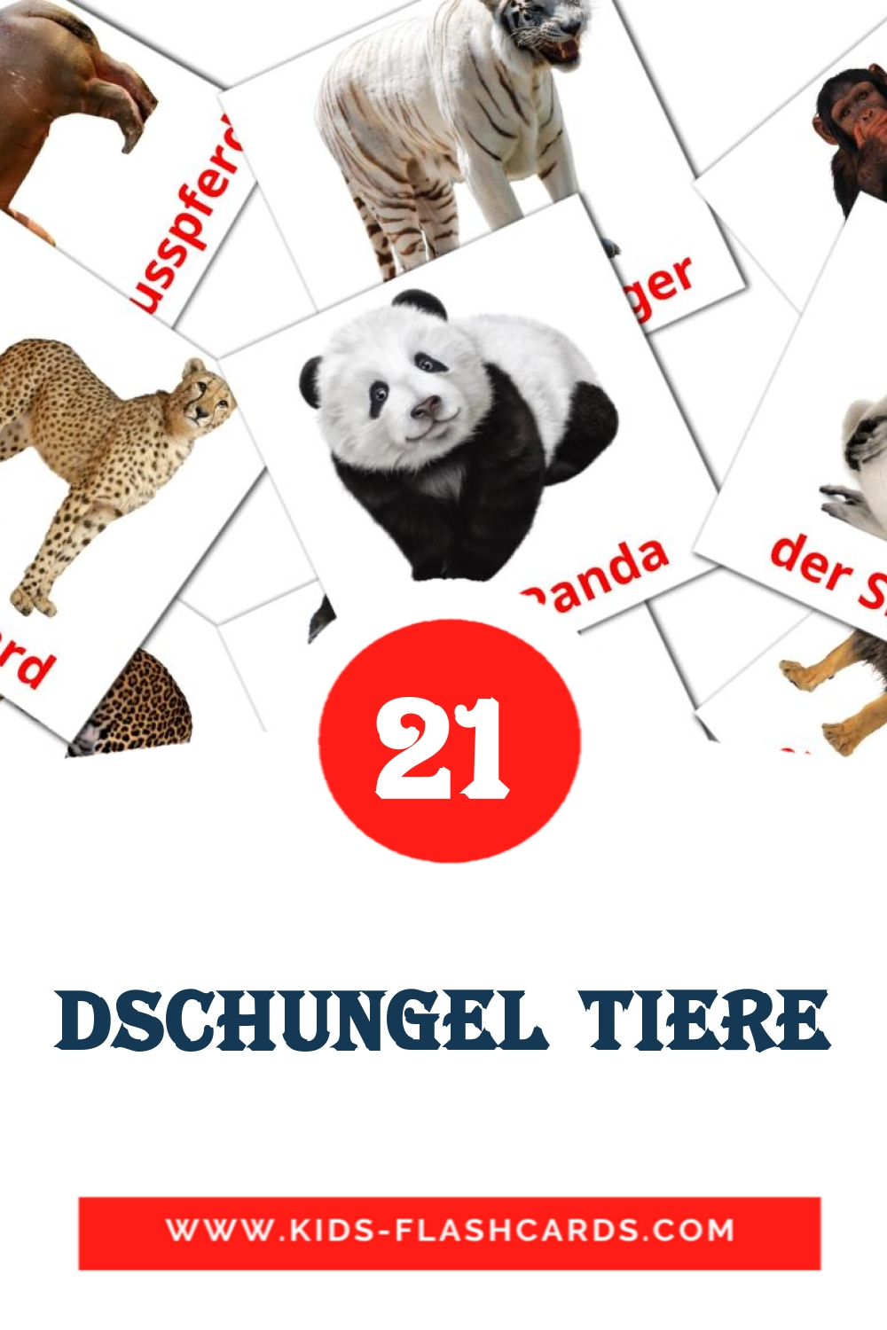 21 Dschungel Tiere Picture Cards for Kindergarden in german