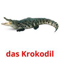 das Krokodil picture flashcards