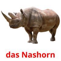 das Nashorn picture flashcards
