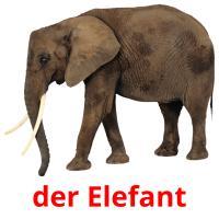 der Elefant picture flashcards