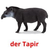 der Tapir picture flashcards