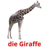 die Giraffe picture flashcards