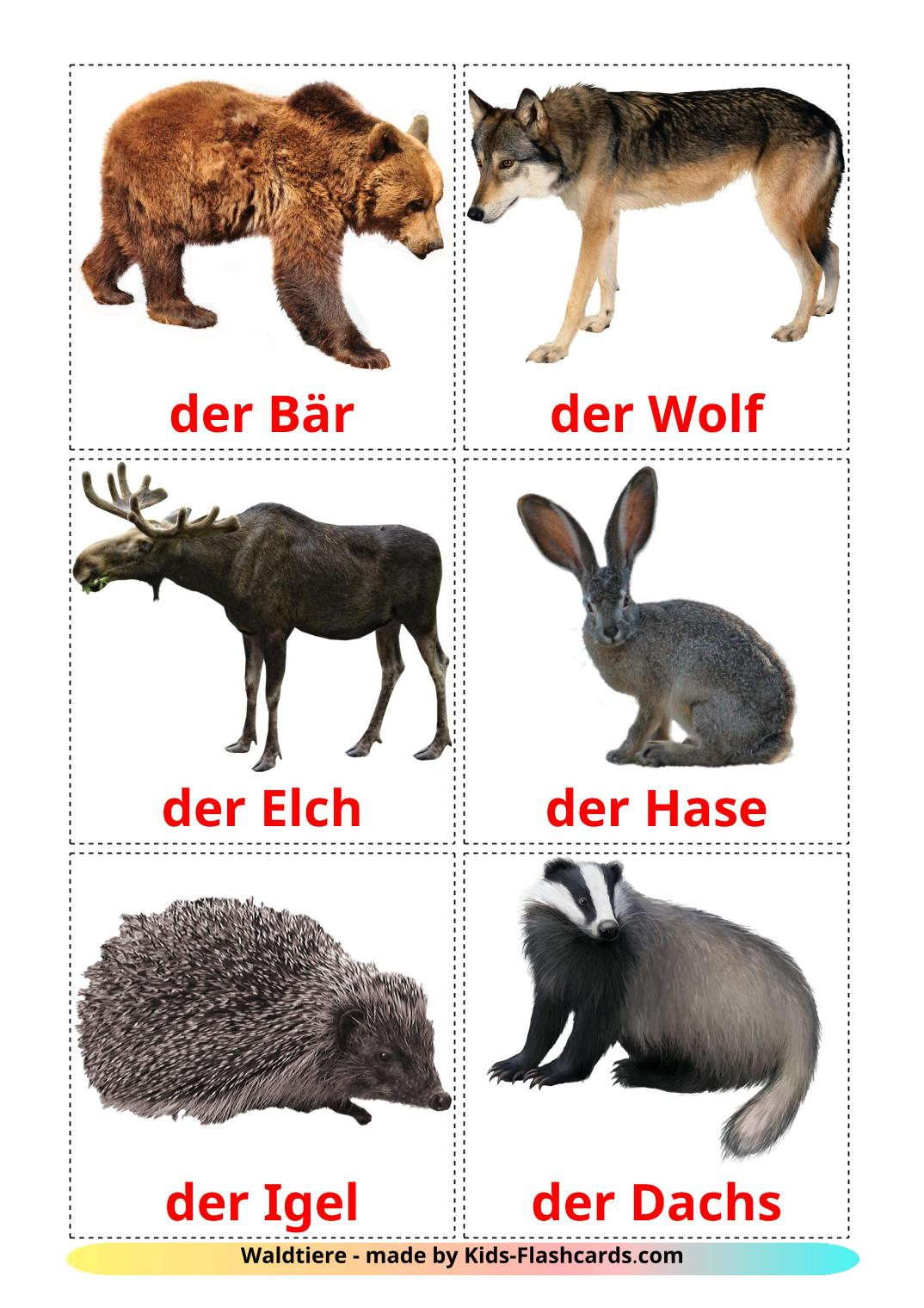 Forest animals - 22 Free Printable german Flashcards