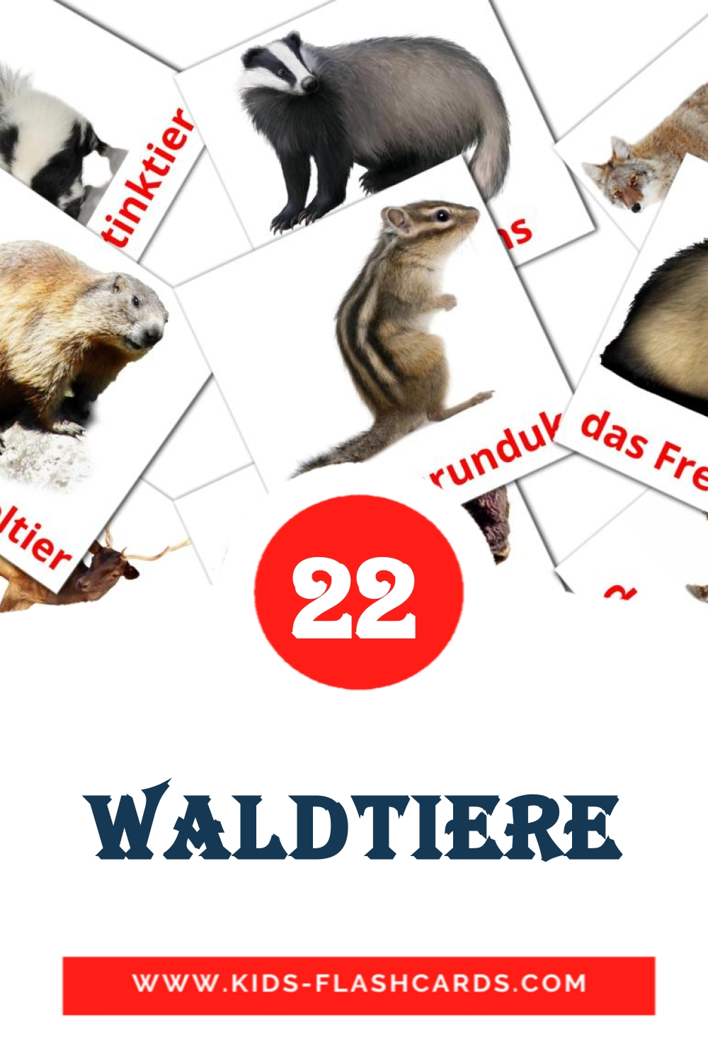 22 Waldtiere Picture Cards for Kindergarden in german