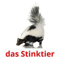 das Stinktier picture flashcards