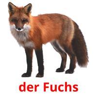 der Fuchs picture flashcards