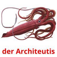 der Architeutis picture flashcards