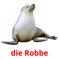 die Robbe picture flashcards