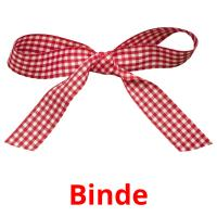 Binde picture flashcards