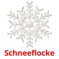 Schneeflocke picture flashcards