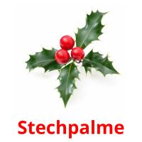 Stechpalme picture flashcards