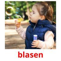blasen picture flashcards