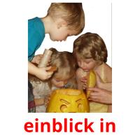 einblick in picture flashcards