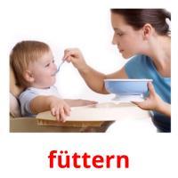 füttern picture flashcards