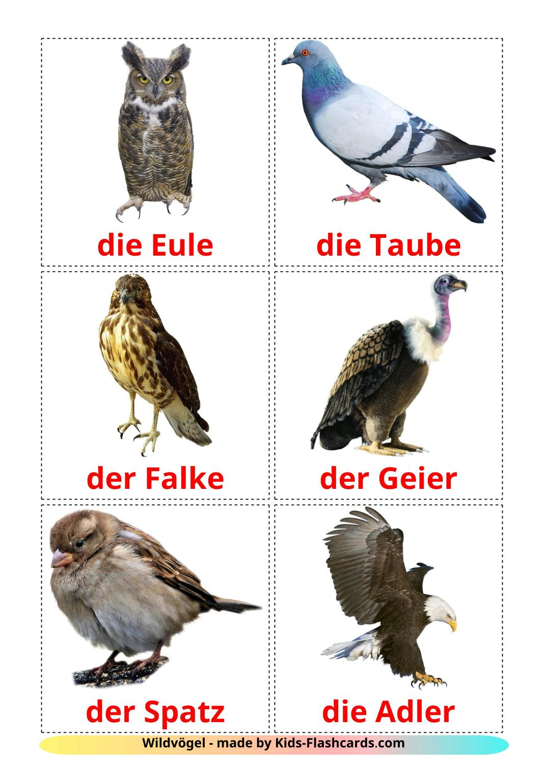 Wild birds - 17 Free Printable german Flashcards