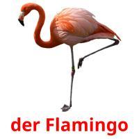 der Flamingo picture flashcards