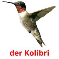 der Kolibri picture flashcards