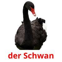 der Schwan picture flashcards