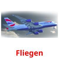 Fliegen picture flashcards