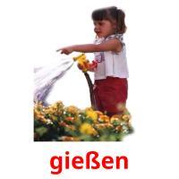 wassern picture flashcards