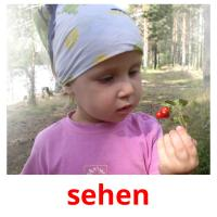 sehen picture flashcards