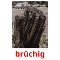 brüchig picture flashcards