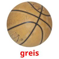 greis picture flashcards