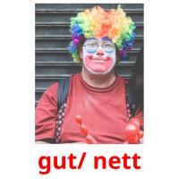 gut/ nett picture flashcards