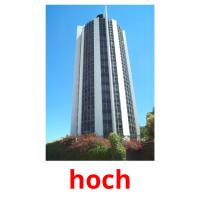 hoch picture flashcards