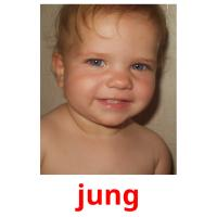 jung picture flashcards
