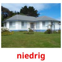 niedrig picture flashcards