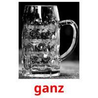 schön/hübsch picture flashcards